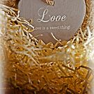brown wooden love heart in a love nest by morrbyte
