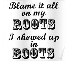 Blame It All On My Roots Poster