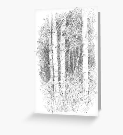 """The Lady of the Woods"", Silver Birch Tree Greeting Card"