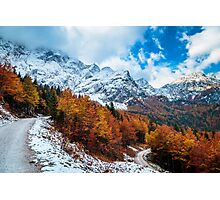 trekking path in an autumn day in the alps Photographic Print
