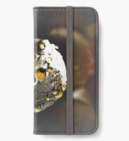 grape iPhone Wallet/Case/Skin
