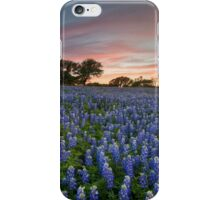 Texas Bluebonnet Images - Evening in the Texas Hill Country 2 iPhone Case/Skin
