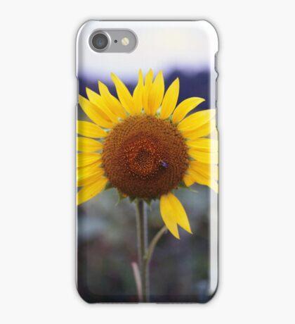 Sunflower's Last Days iPhone Case/Skin