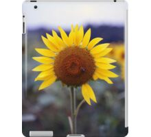 Sunflower's Last Days iPad Case/Skin