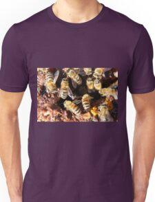 Macro Honeybees Unisex T-Shirt