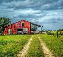 Red Barn Rustic by Susan Nixon