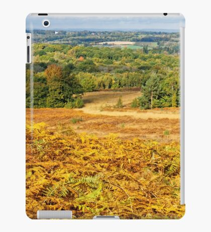 Ashdown Forest in Autumn iPad Case/Skin