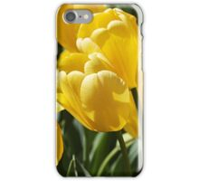 Sunny Patch iPhone Case/Skin