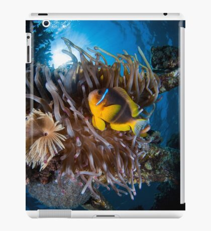 Under water photography of a Red Sea iPad Case/Skin