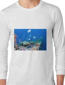 fish and scuba diver at a coral reef, Photographed at 10m, Red Sea, Eilat, Israel  Long Sleeve T-Shirt