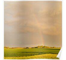 LG G5 Springtime Bow Poster