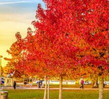 Red Tree In Autumn  Sticker