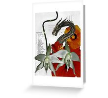Dragon Plate 6 redux Greeting Card