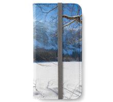 Winter Sun iPhone Wallet/Case/Skin