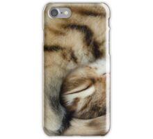 Sleeping kitten iPhone Case/Skin