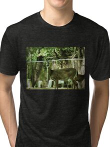 """Oh, Deer!""...prints and products Tri-blend T-Shirt"