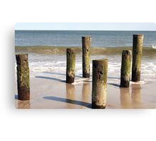 The Jersey Shore 13 Canvas Print