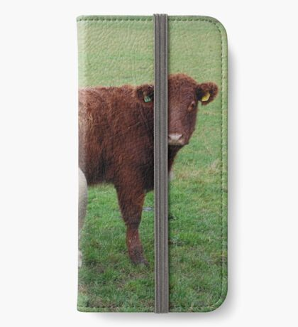 Farmyard Buddies iPhone Wallet/Case/Skin
