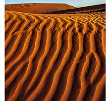 Sandscape.   by Terry Marter  by Terry Marter