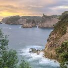 Te Pare Point, Hahei, Coromandel by Kimball Chen
