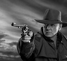 High plains gunman by David  Hibberd