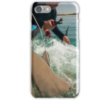 Researchers are tagging a sandbar shark (Carcharhinus plumbeus)  iPhone Case/Skin