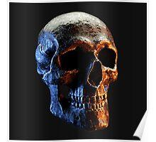 Bare Bones - Skull Poster