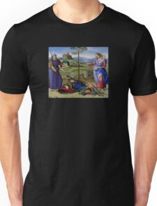 Raphael - Vision of a Knight - Renaissance Painting Duvet, T-Shirt, Cell Phone Cover Unisex T-Shirt