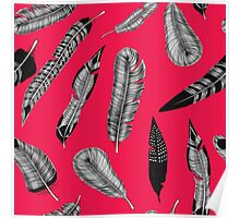 Hand drawn feathers pattern Poster