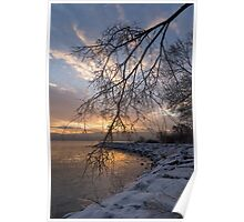 Beautiful Aftermath of an Ice Storm - Sunrise Through Frozen Branches Poster