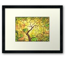 Watercolor autumn tree. Framed Print