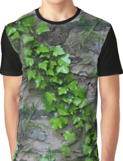 Ivy Lines Graphic T-Shirt