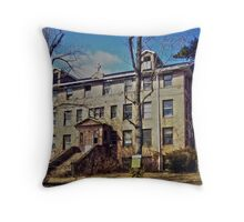 St. Mary's of the Ozarks Throw Pillow