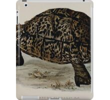 Tortoises terrapins and turtles drawn from life by James de Carle Sowerby and Edward Lear 011 iPad Case/Skin