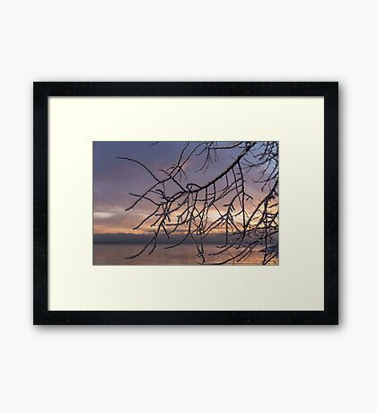 Beautiful Aftermath of an Ice Storm - Branch Pattern on Rosy Blues - Left Framed Print
