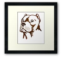 American Pit Bull Terrier Dog Breed puppy pet Framed Print
