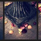 Remnants of Roses Triptych by Jessica Jenney