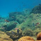 Underwater Dreamworld by Kasia-D