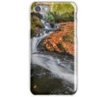 Wicklow Mountains iPhone Case/Skin