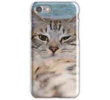Cat makes selfie lying on the sand iPhone Case/Skin