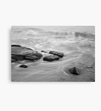 Allens Pond XIII BW Canvas Print