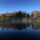 Autumn Morning at the Pond by Bine