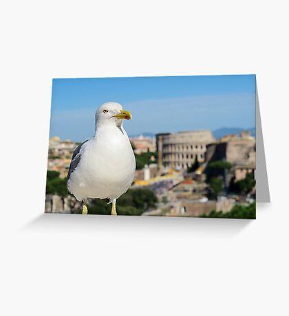 Rome Seagull. Greeting Card