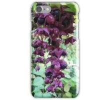 Leycesteria Pheasant Berry iPhone Case/Skin