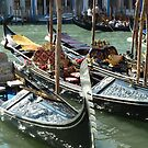 Gondolas on the Grand Canal by Fay  Hughes