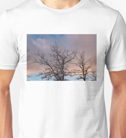 Beautiful Aftermath of an Ice Storm, Just Lift Up Your Eyes and Enjoy Unisex T-Shirt