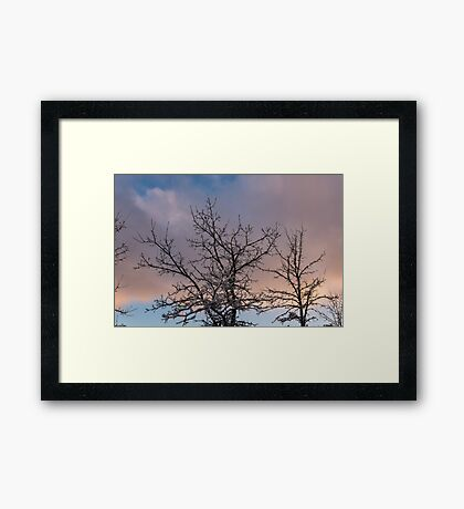Beautiful Aftermath of an Ice Storm, Just Lift Up Your Eyes and Enjoy Framed Print