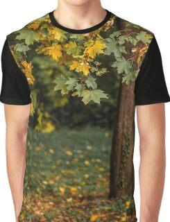 Autumn landscape with orange autumn oak tree in the field Graphic T-Shirt