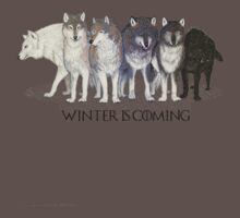 Stark's Direwolves - Winter is Coming! by kingmike94