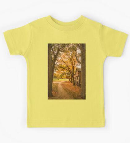 Autumn in Dean Park, Brookline, MA Kids Tee
